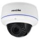 Proline IP-V2133WZ POE