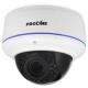 Proline IP-V2133AWZ POE