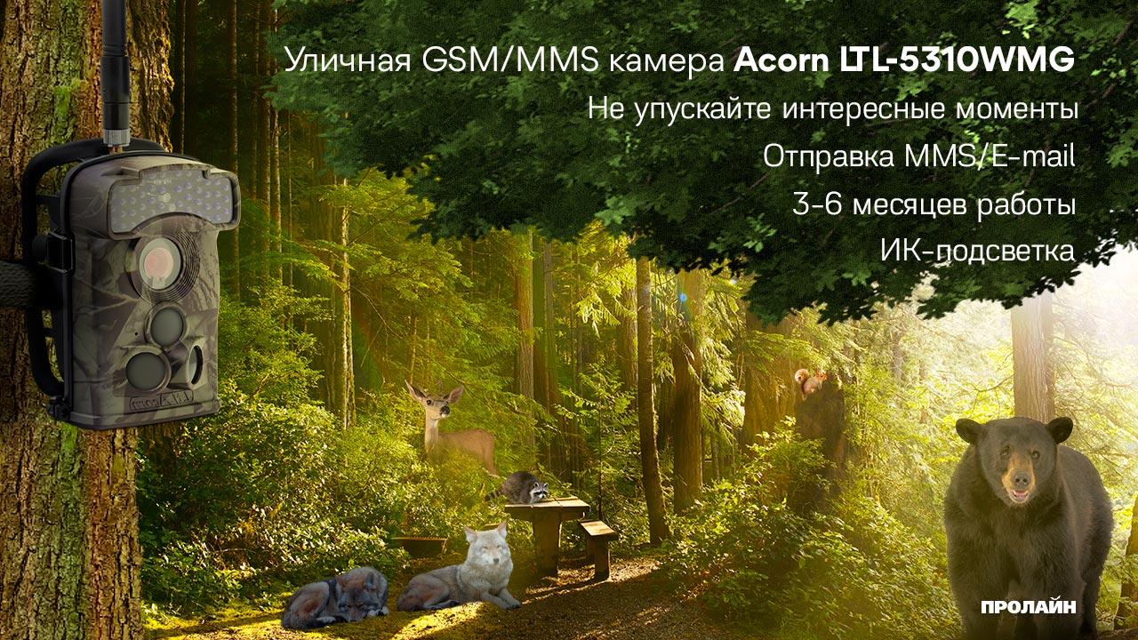 Уличная GSM/MMS камера Acorn LTL-5310WMG