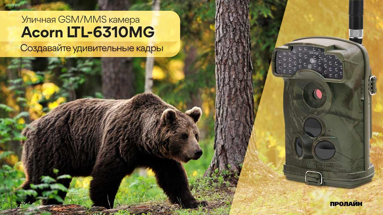 Уличная GSM/MMS камера Acorn LTL-6310MG
