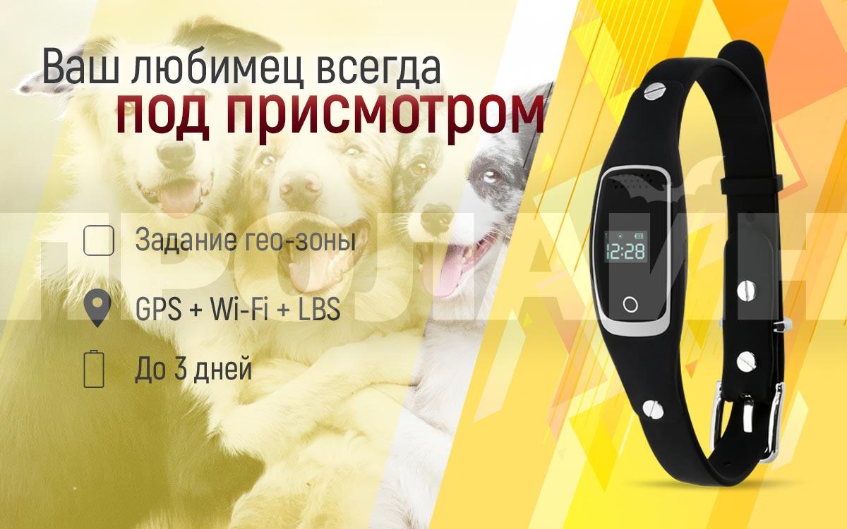 GPS-трекер для животных GTP01SB