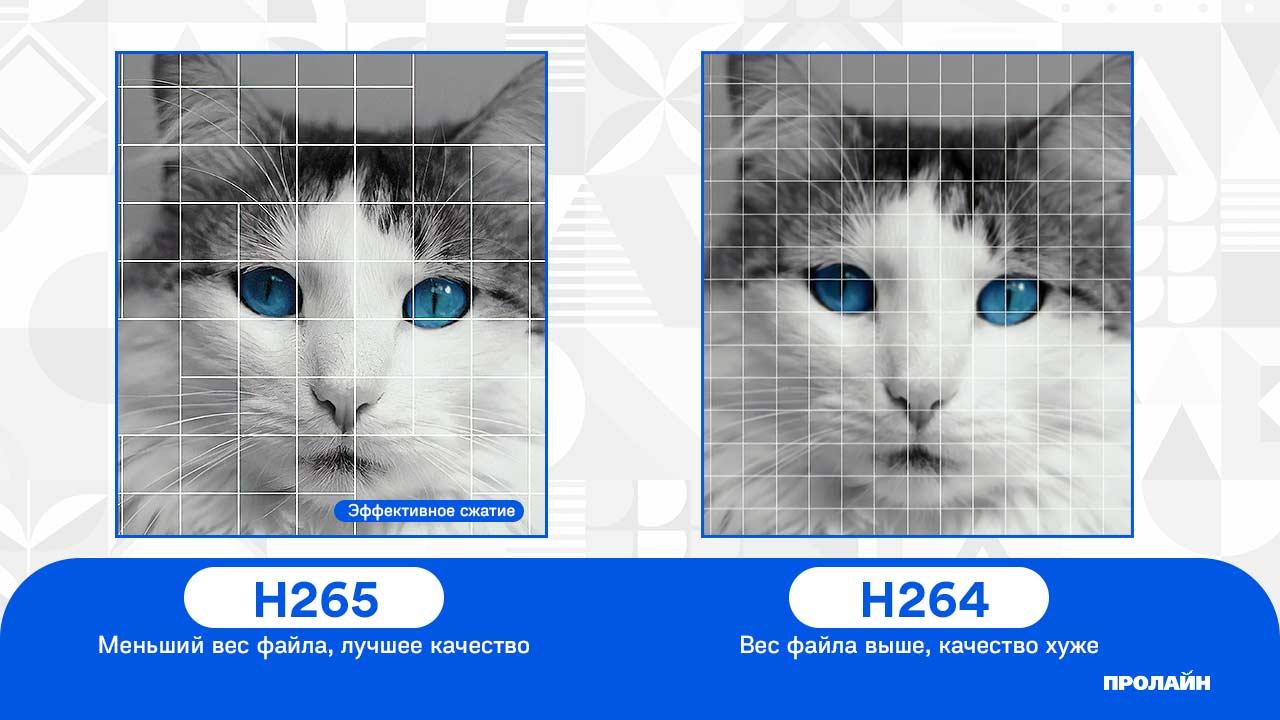 Купольная IP-камера Proline PR-ID2234FCX - H265 vs H264
