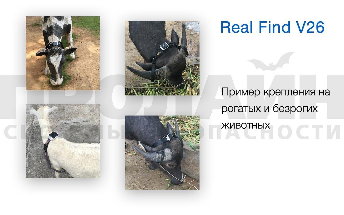 Пример крепления Real Find V-26