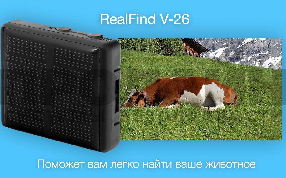 Real Find V-26