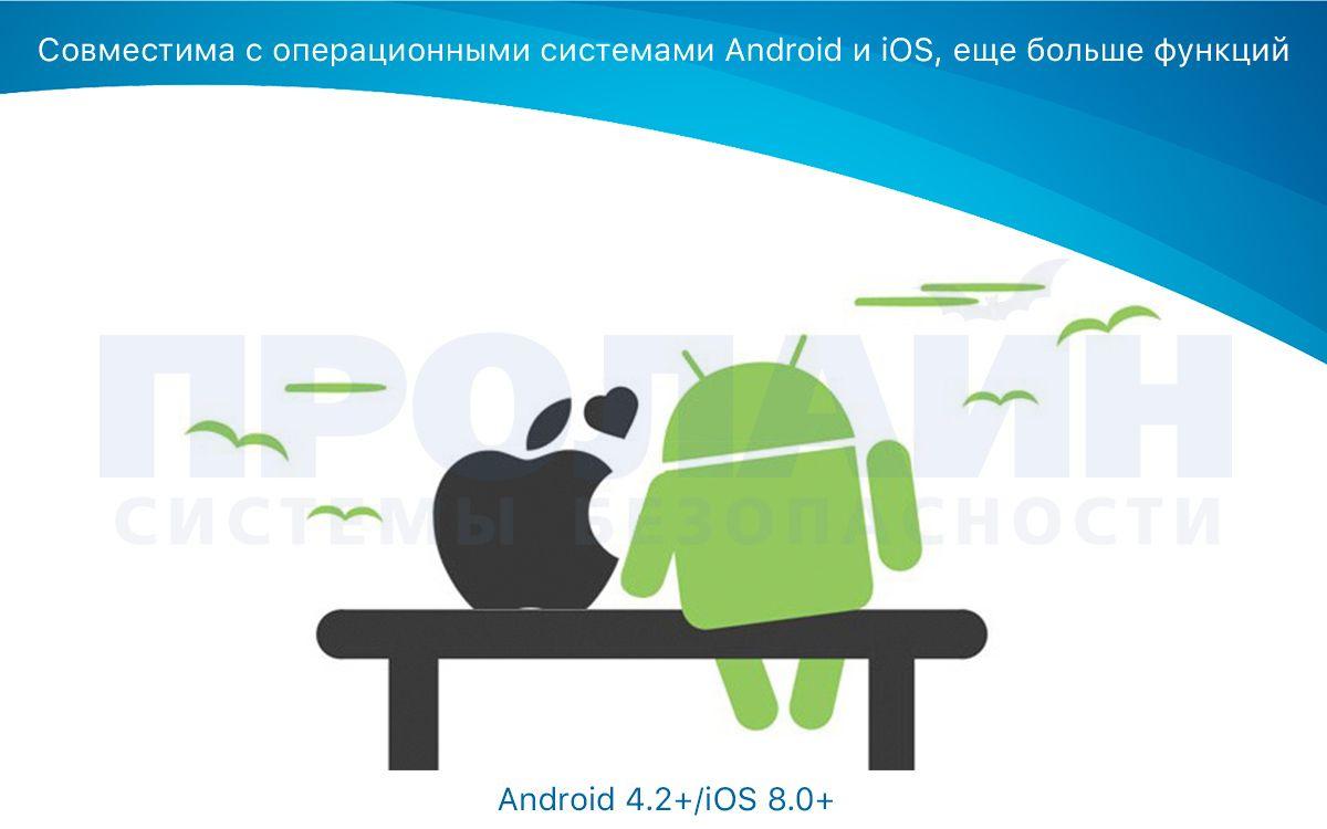 Xiaomi ROIDMI BFQ02RM