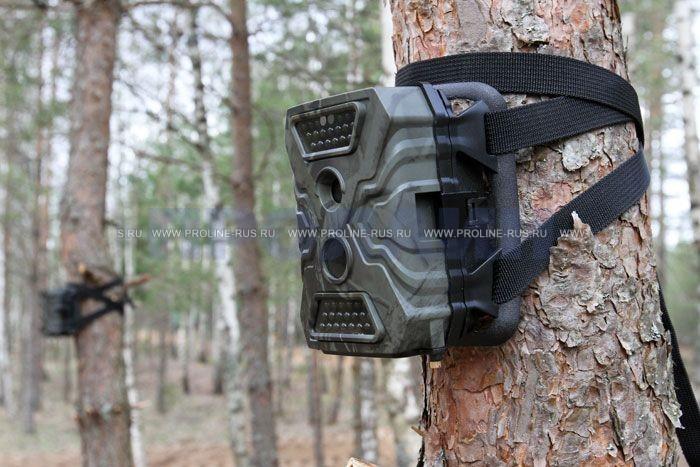 купить фотоловушку для охоты и охраны
